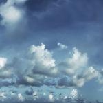 Чайка Джонатан. Керала, Индия - Kartzon Dream - тревел фото, тревел видео, авторские путешествия, фототуры