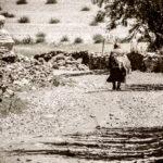 Мгновение жизни. Занскар, Индия - Kartzon Dream - тревел фото, тревел видео, авторские путешествия, фототуры