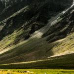 Охота на сурков, Занскар, Индия - Kartzon Dream - тревел фото, тревел видео, авторские путешествия, фототуры