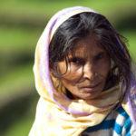 Крестьянка из Укхимата. Лица Индии - Kartzon Dream - тревел фото, тревел видео, авторские путешествия, фототуры