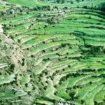 Море. Гималаи, Индия - Kartzon Dream - тревел фото, тревел видео, авторские путешествия, фототуры