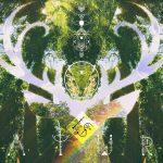 God is Nature! Секвойя Парк, США - Kartzon Dream - цифровая графика, тревел фото, тревел арт, тревел видео, авторские туры, фототуры