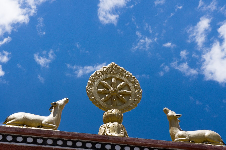 Пьянг гомпа, Ладакх, Индия