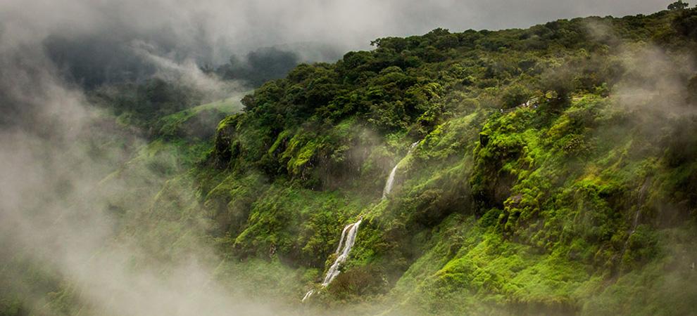 Махабалешвар, заповедник Койна - Тур в Центральную Индию. Аджанта, Эллора, Хампи