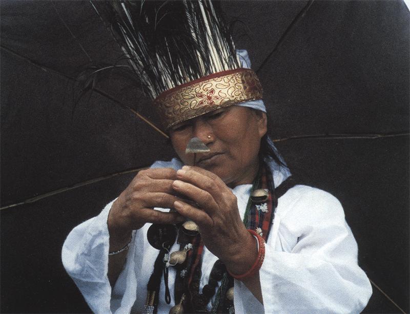 Шаман Кирати Парвати Рэй на Калинчок с мифическим космическим грибом (Panaeolus sp.) в виде защитного зонтика, и зонтиком от дождя.