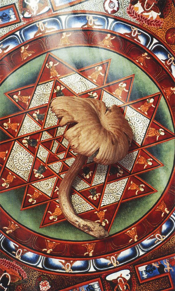 """""""Вороненый гриб"""" словно bindu, космическая точка, объединяющая разные полюса творения."""